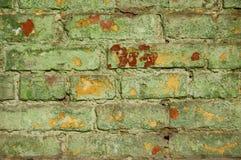 Gammal grön tegelstenvägg. Royaltyfri Fotografi