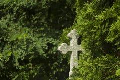 Gammal grav med korset p? traditionell europeisk kyrkog?rd f?r gravsten ?ldrig allvarlig g?rd i skog royaltyfri bild
