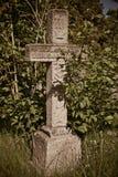 Gammal gravsten i natur Arkivfoton