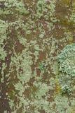 Gammal gravstentextur arkivbilder
