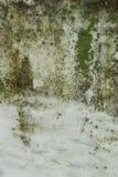 Gammal gravstentextur arkivfoton