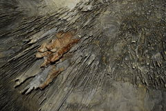 Gammal grotta med stalactides och stalagmit Royaltyfri Bild