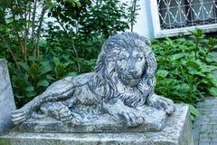 Gammal grungelejonstaty på den Lviv stadsgatan, Ukraina fotografering för bildbyråer