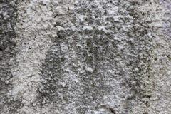 Gammal grungy textur, grå betongvägg Arkivbilder