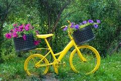 Gammal gul cykel med korgar av blommor Fotografering för Bildbyråer
