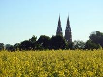 Gammal härlig kyrka och att våldta fältet, Litauen royaltyfri fotografi