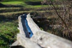 Gammal handgjord retro vattentransport Royaltyfria Foton