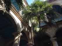 Gammal havannacigarr - Kuba - Palacio de la Artesania Royaltyfri Foto