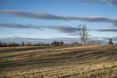 Gammal Hayfield i vinter med dramatiska moln och skuggor royaltyfria bilder