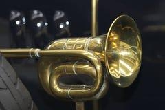 gammal horn Arkivfoto