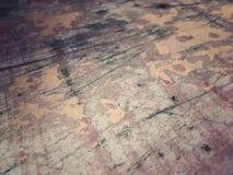 Gammal hud av trä Royaltyfri Bild