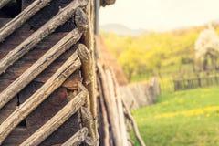 Gammal hus och trädgård bakom i Bratovesti Rumänien Arkivfoton