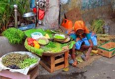 Gammal indisk kvinna som säljer grönsakerna Arkivbilder
