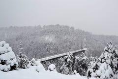 Gammal järnbro i vintern Royaltyfri Fotografi