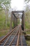 Gammal järnjärnvägbro Royaltyfria Bilder
