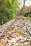 gammal järnväg Fotografering för Bildbyråer