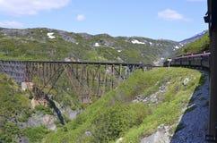 gammal järnväg för bro Royaltyfri Fotografi
