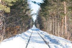 Gammal järnväg i vinter Fotografering för Bildbyråer