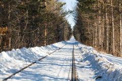 Gammal järnväg i vinter Arkivfoton
