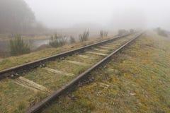 Gammal järnväg linje Borkense kurs i Nederländerna Arkivfoto