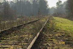 Gammal järnväg linje Borkense kurs nära den tyska gränsen i kommunen av Winterswijk Royaltyfri Fotografi