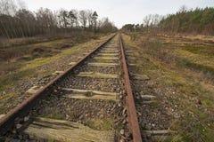 Gammal järnväg linje Borkense kurs nära den tyska gränsen i kommunen av Winterswijk Arkivbild