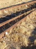 Gammal järnväg spårar Arkivfoto