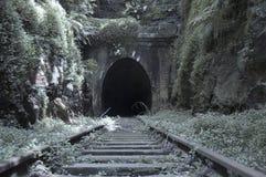gammal järnväg tunnel Royaltyfria Bilder