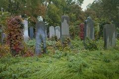 Gammal judisk kyrkogård Fotografering för Bildbyråer