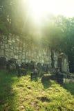 Gammal judisk kyrkogård Royaltyfri Foto