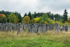 Gammal judisk kyrkogård, Brody, Ukraina Arkivbilder
