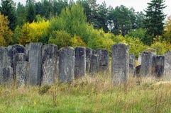 Gammal judisk kyrkogård, Brody, Ukraina Royaltyfri Foto