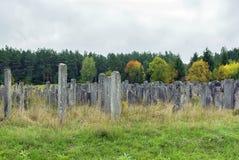 Gammal judisk kyrkogård, Brody, Ukraina Royaltyfria Bilder