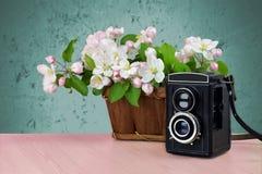 Gammal kamera och blommande äppleträd sista teknologier retro Royaltyfri Bild