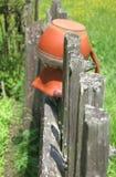 Gammal kanna på staketet Royaltyfri Foto