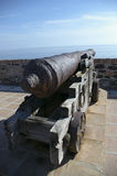 gammal kanon Royaltyfri Bild