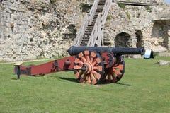 gammal kanon Arkivbild