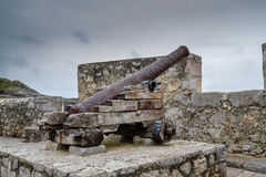 gammal kanon Royaltyfri Foto