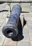 gammal kanon Royaltyfri Fotografi