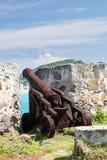 Gammal kanon som rostar på St karibiska Martin Royaltyfria Foton