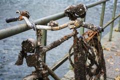 Gammal kasserad cykelbenägenhet mot en räcke på vattnet, fu Royaltyfri Foto