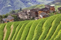 Gammal kinesisk by i ricefieldsna royaltyfria foton