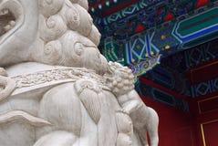 Gammal kinesisk stenstaty av ett lejon med en gröngöling i den imperialistiska slotten, Peking royaltyfria foton