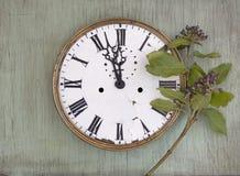 Gammal klocka på den gröna wood bakgrunden Bakgrund för nytt år med växter och lilabär Nya sidor och purpurfärgade bär Vinta Royaltyfri Foto