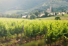 Gammal kloster SantAntimo bland vingårdarna i Tu Royaltyfria Bilder