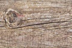 Gammal knuten Wood Grungebakgrundstextur Fotografering för Bildbyråer