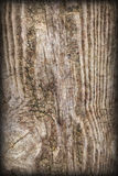 Gammal knuten Wood textur för Vignetted Grungebakgrund Arkivfoto