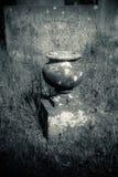 Gammal kruka på en bevuxen grav Royaltyfria Foton