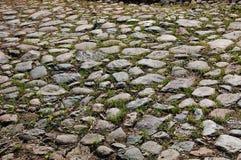 Gammal kullerstenbakgrund med gräs Royaltyfri Bild