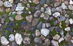 Gammal kullerstenbakgrund med gräs Arkivbilder